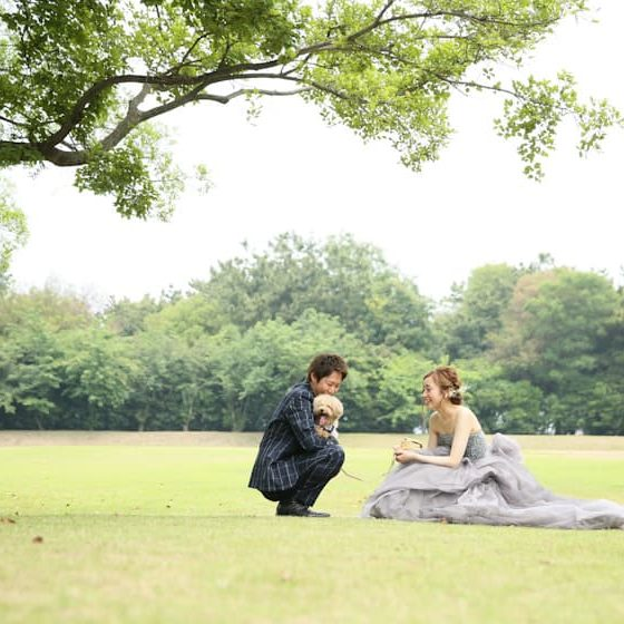 草原で新郎新婦と愛犬