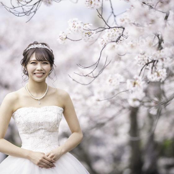 桜/前撮り/フォトウエディング香川